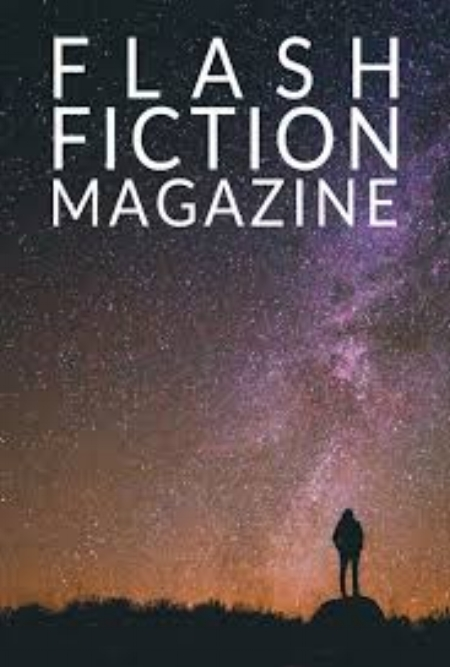 """""""Two Birds"""" in Flash Fiction Magazine"""