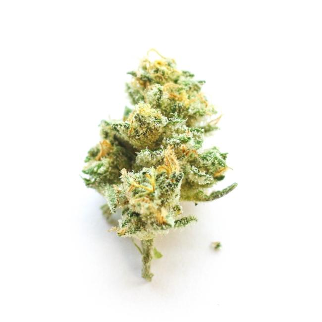 Sour Amesia Cannabis Strain Information