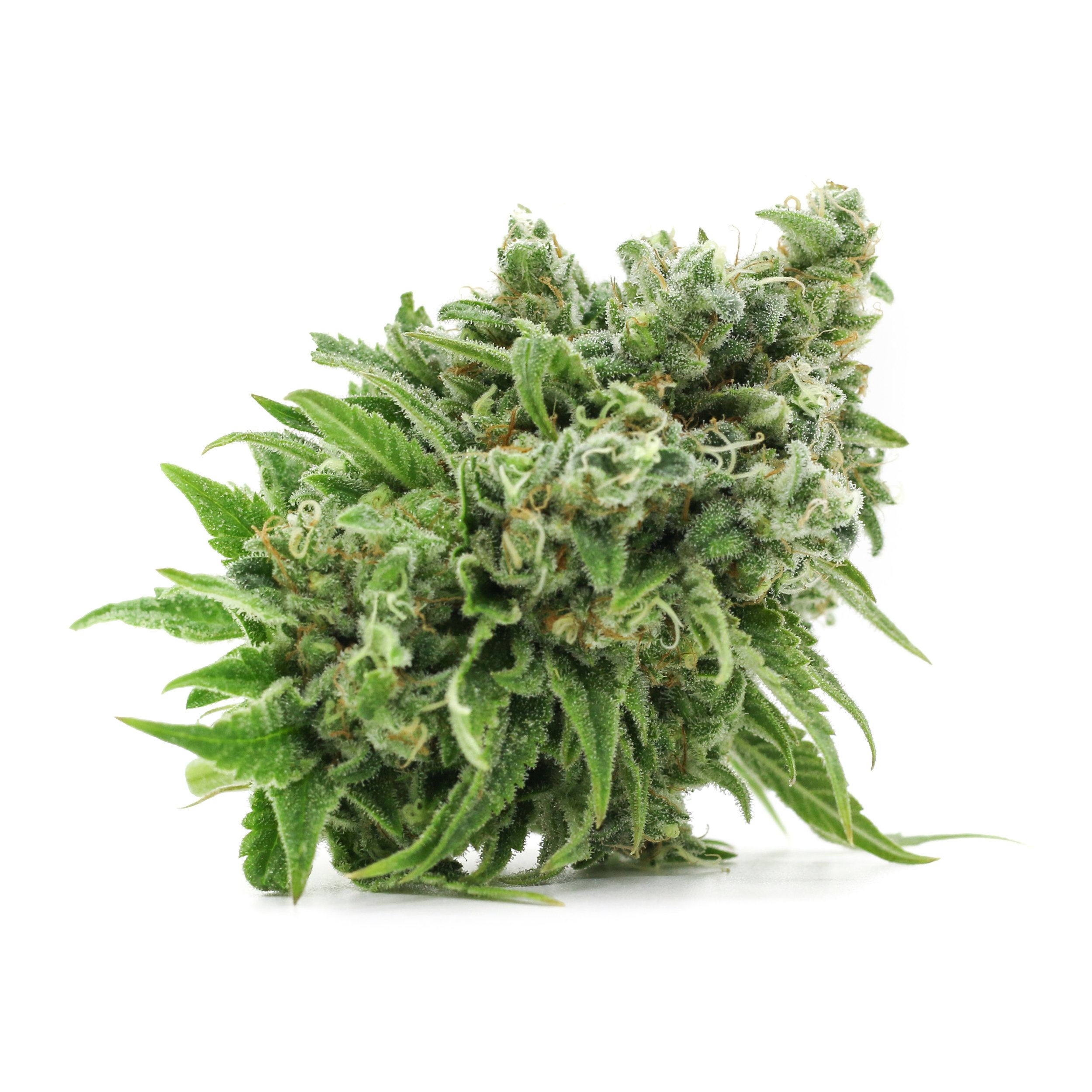 Pineapple Chunk Cannabis Strain