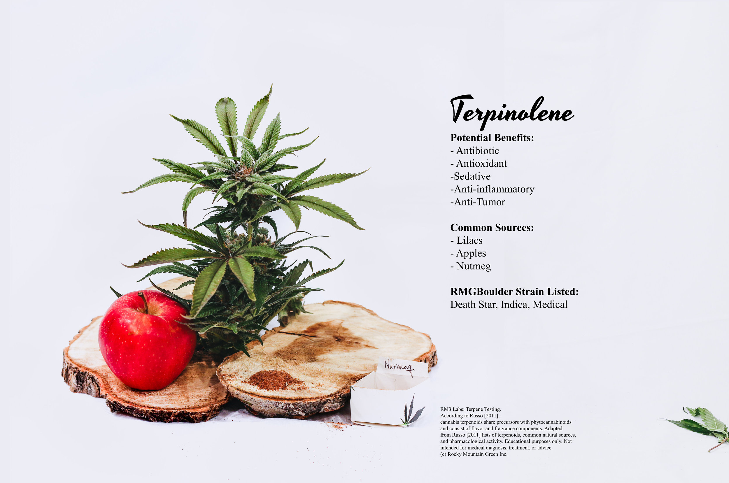 terpinolene benefits