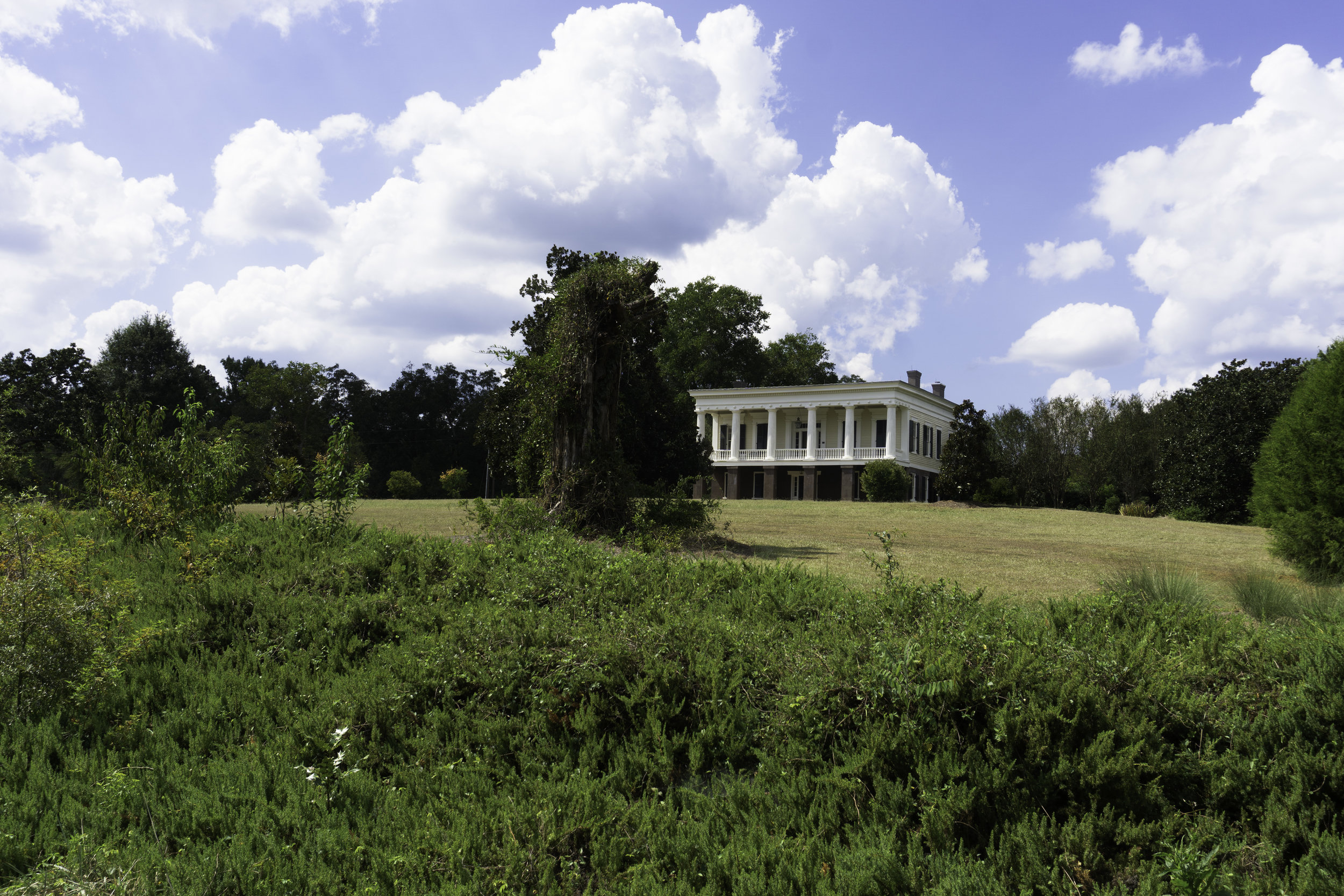 Glen Mary Plantation atop the rolling hill