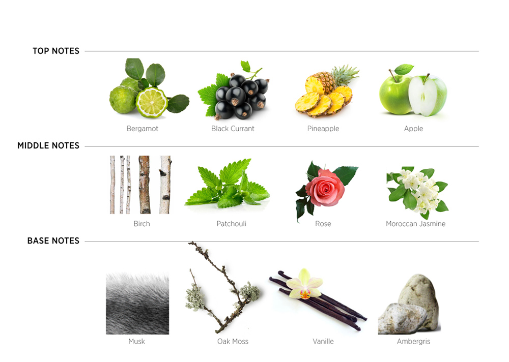 fragrancepyramid_invincibile.jpg