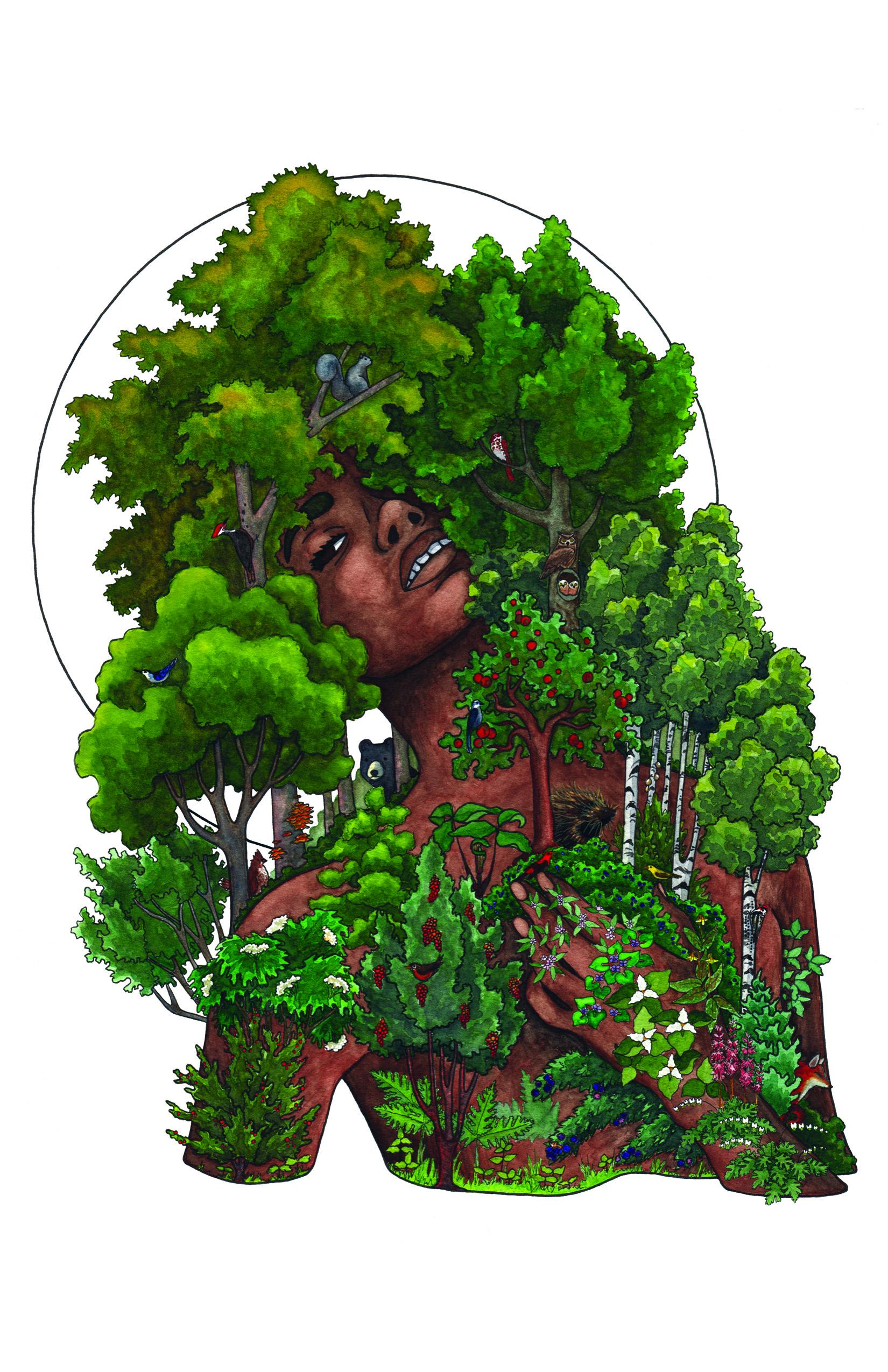 The Deciduous Forest, 2018    Pen & Watercolor