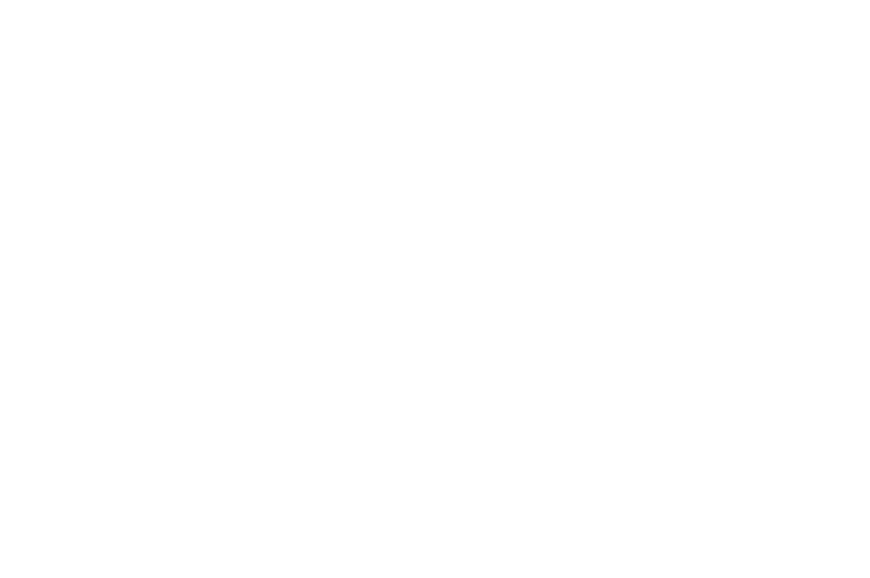 OFFICIAL SELECTION - DC Independent Film Festival - 2018.png
