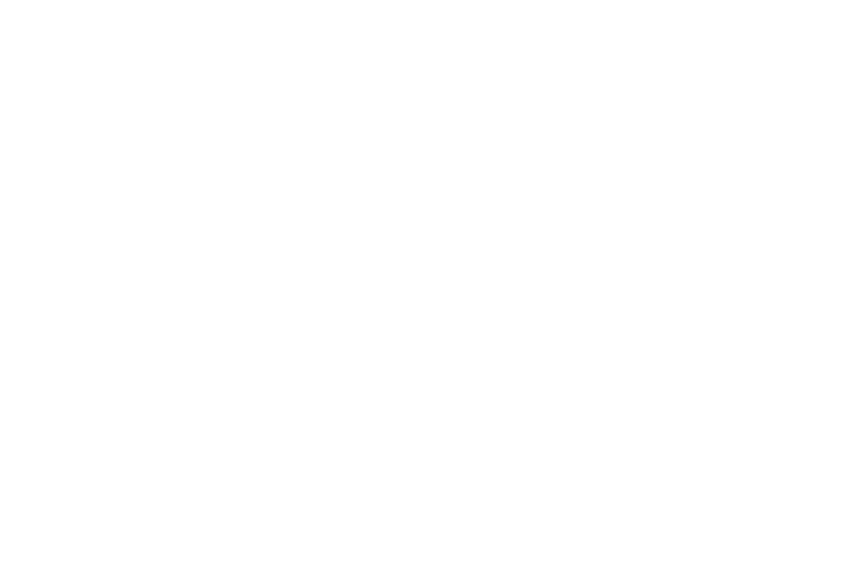 OFFICIAL SELECTION - Berlin Feminist Film Week - 2018 copy.png
