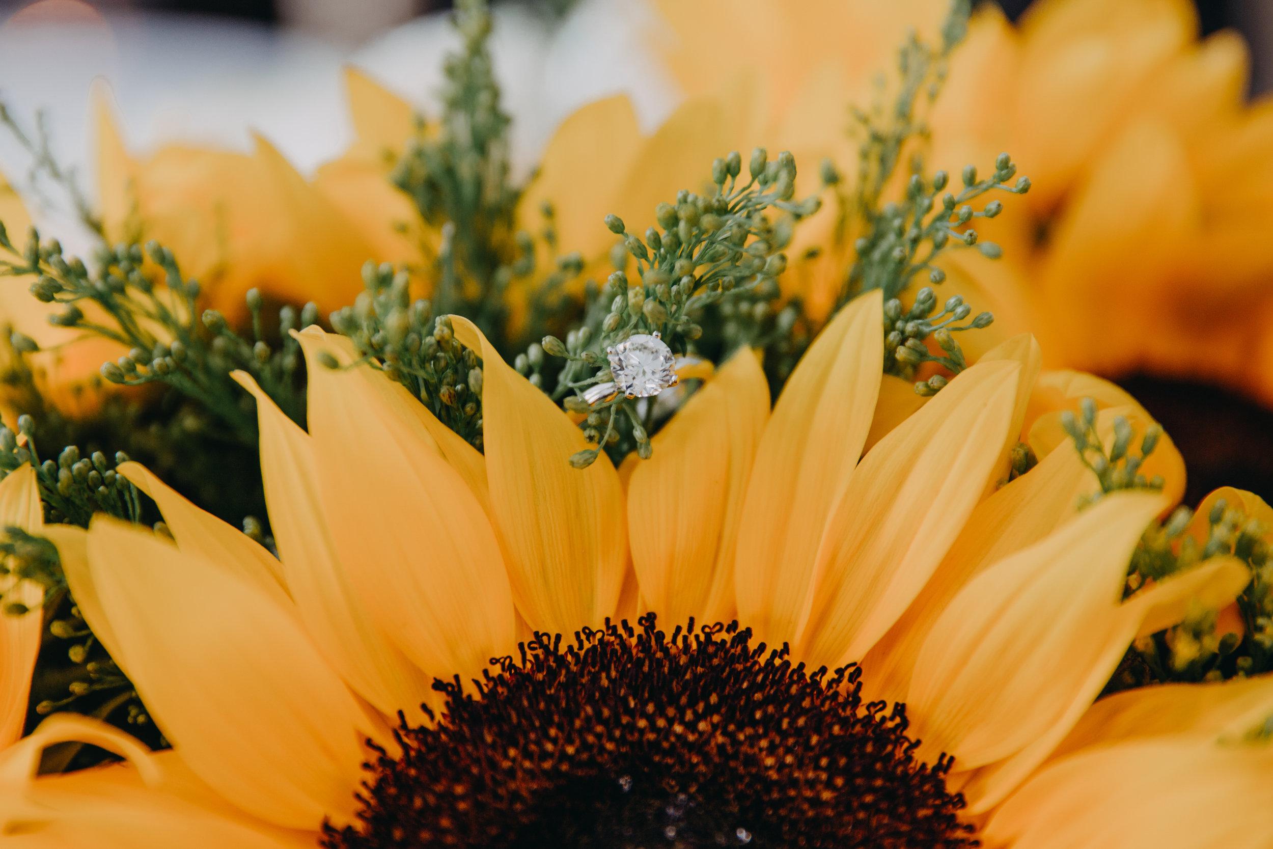 HARIKAPHOTO_WeddingPhotography-82.jpg