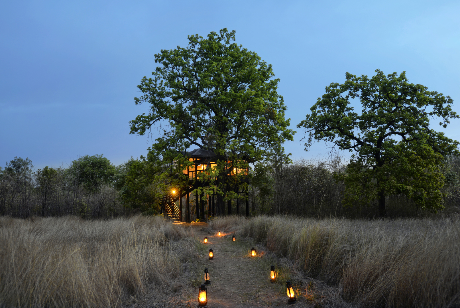 Pench Tree Lodge is home to six treehouses and six cottages for visitors