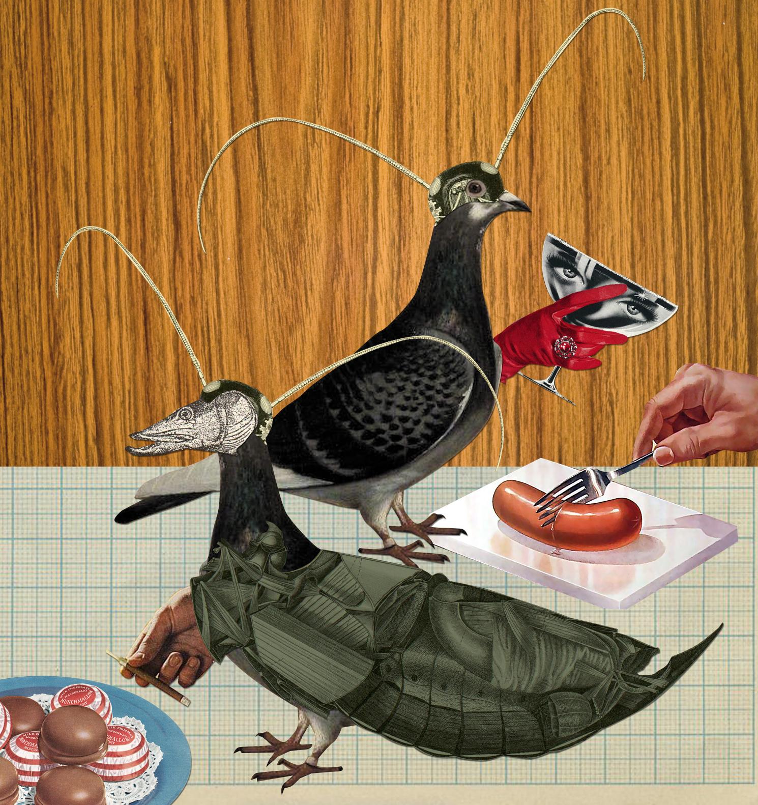pigeon fancy dress party.jpg