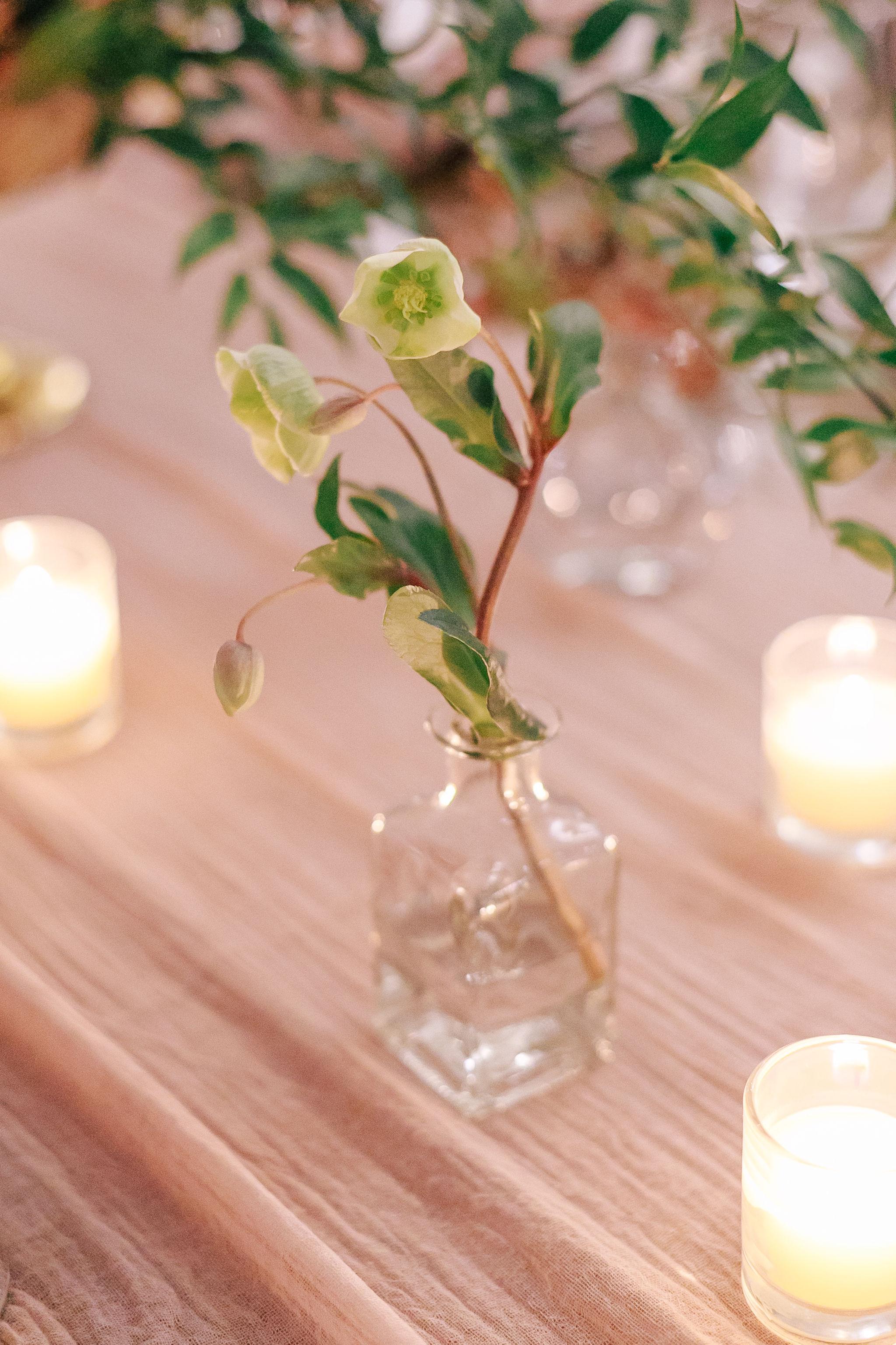 wedding-nature-27.jpg