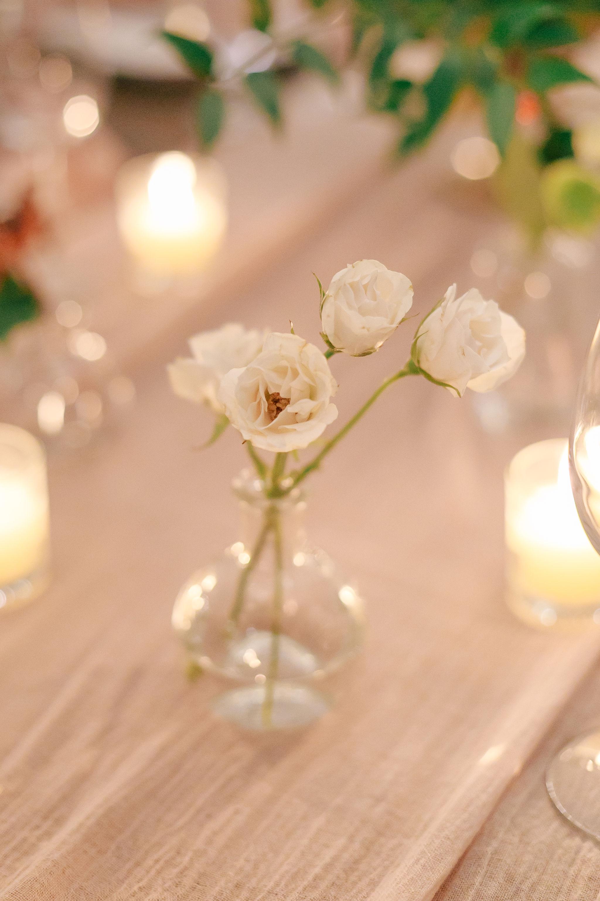 wedding-nature-28.jpg