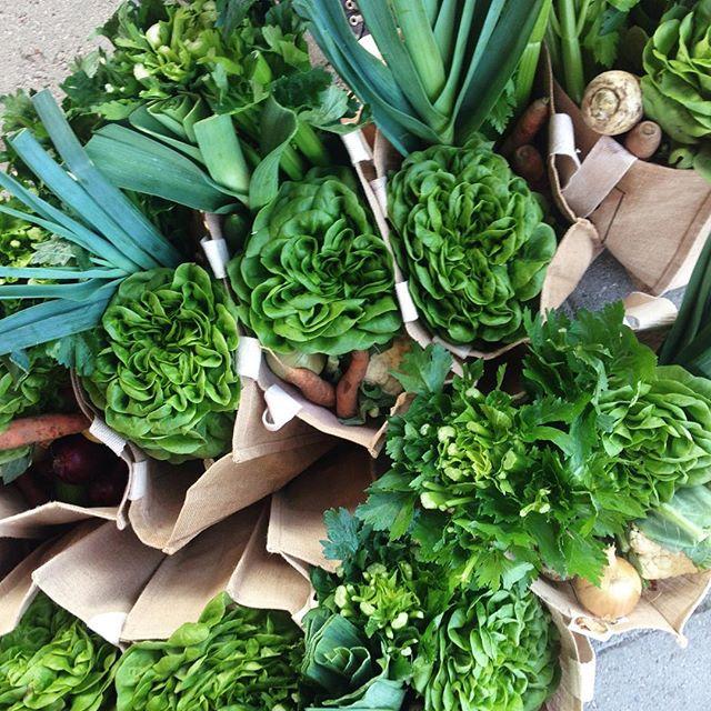I dag er det bestillingsfrist for  neste utlevering i Ås sentrum! Nå kan du også bestille valgfri grønnsaker i Bua 🥕 Les mer og bestill på nettsiden vår (link i bio)