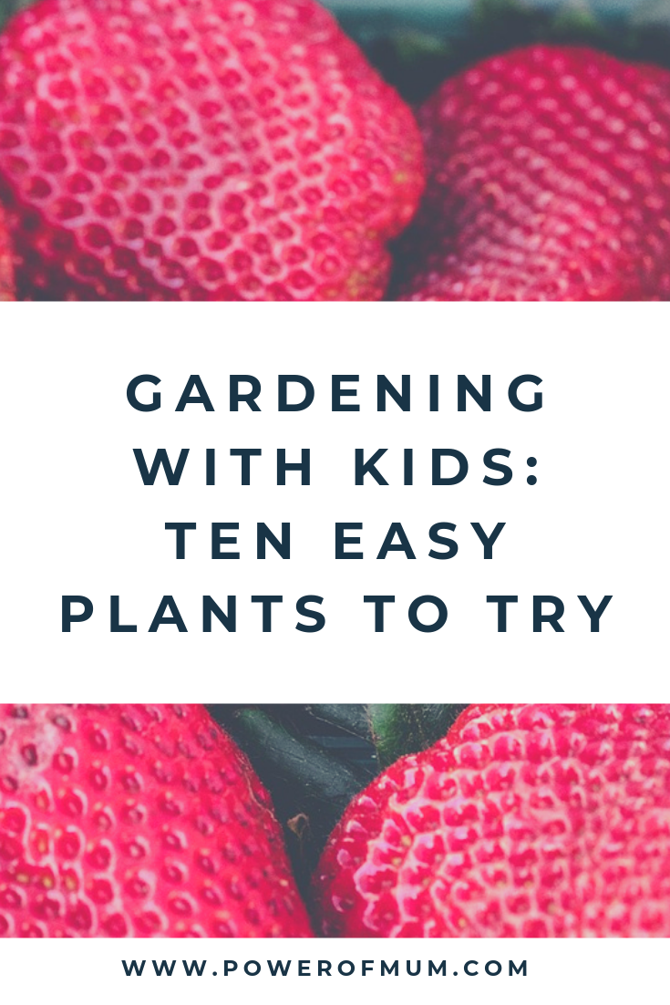 GARDENING WITH KIDS: TEN EASY PLANTS TO TRY