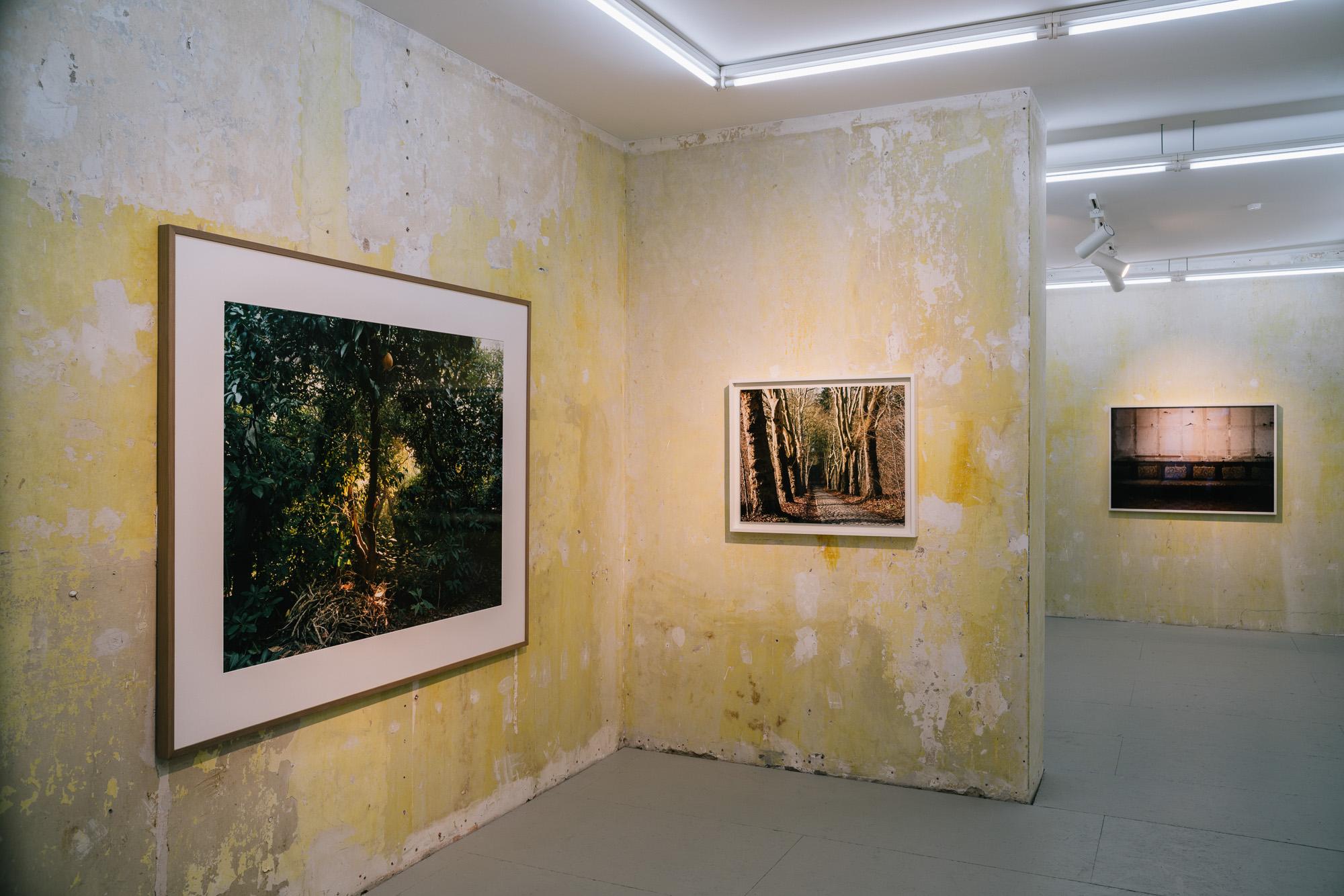 Real Places: Simone Nieweg
