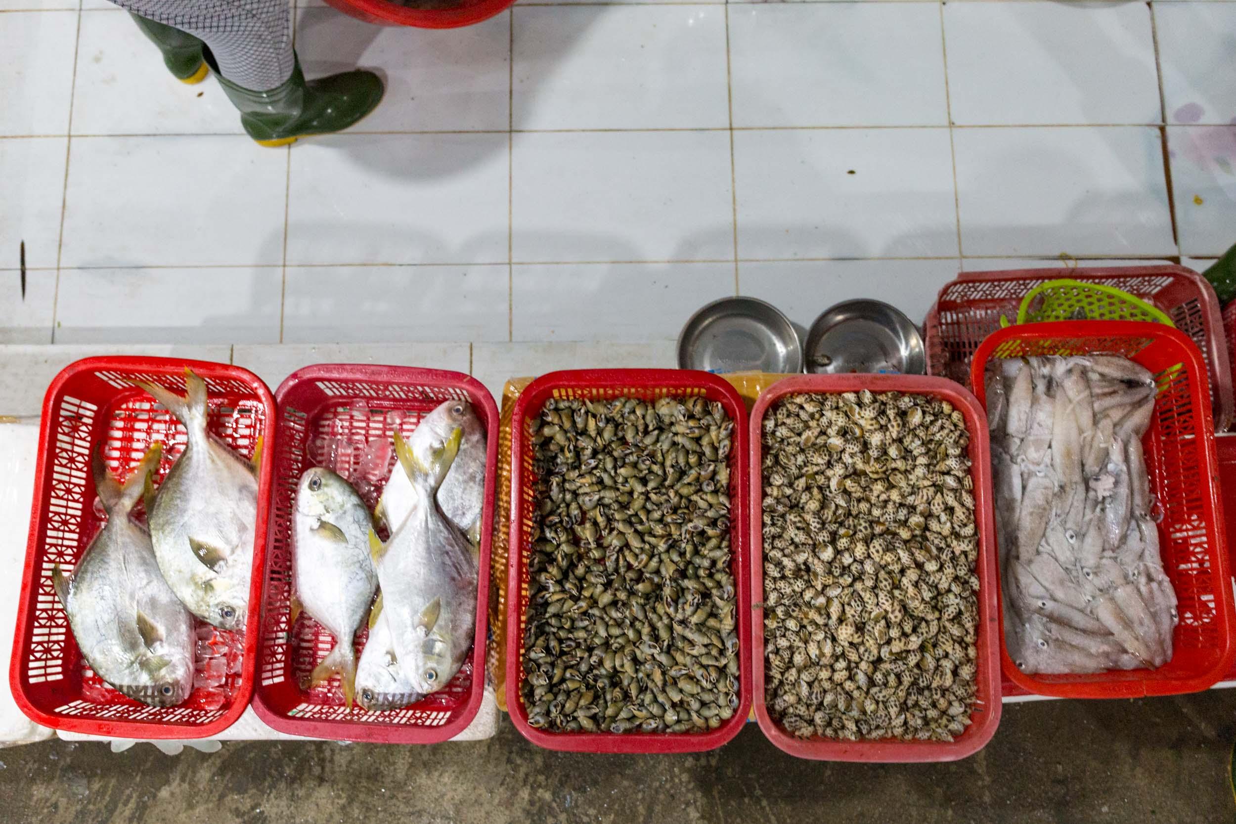 Fresh Fish at Hải sản Bà Rô, Da Nang, Vietnam.