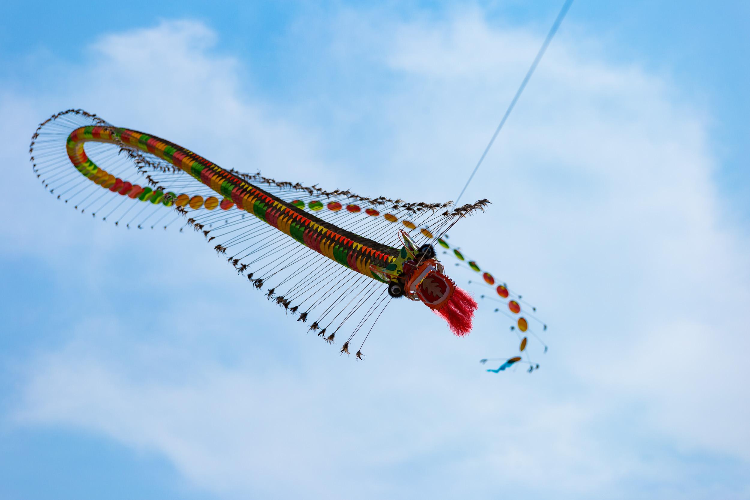 Dragon Kite Da Nang. Vietnam.