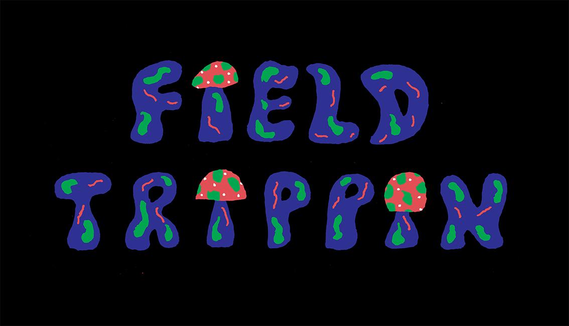 field trippin v3.jpg