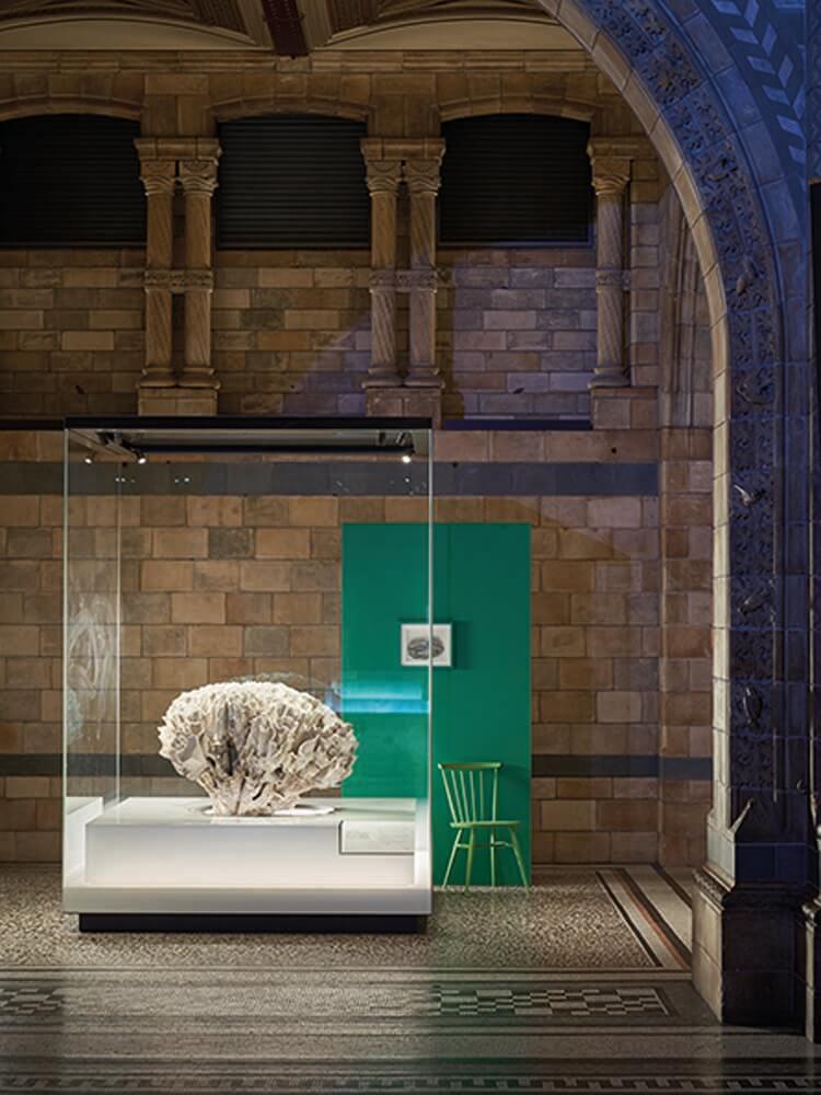 - VERDIGRIS GREENNatural History Museum London@farrowball.com