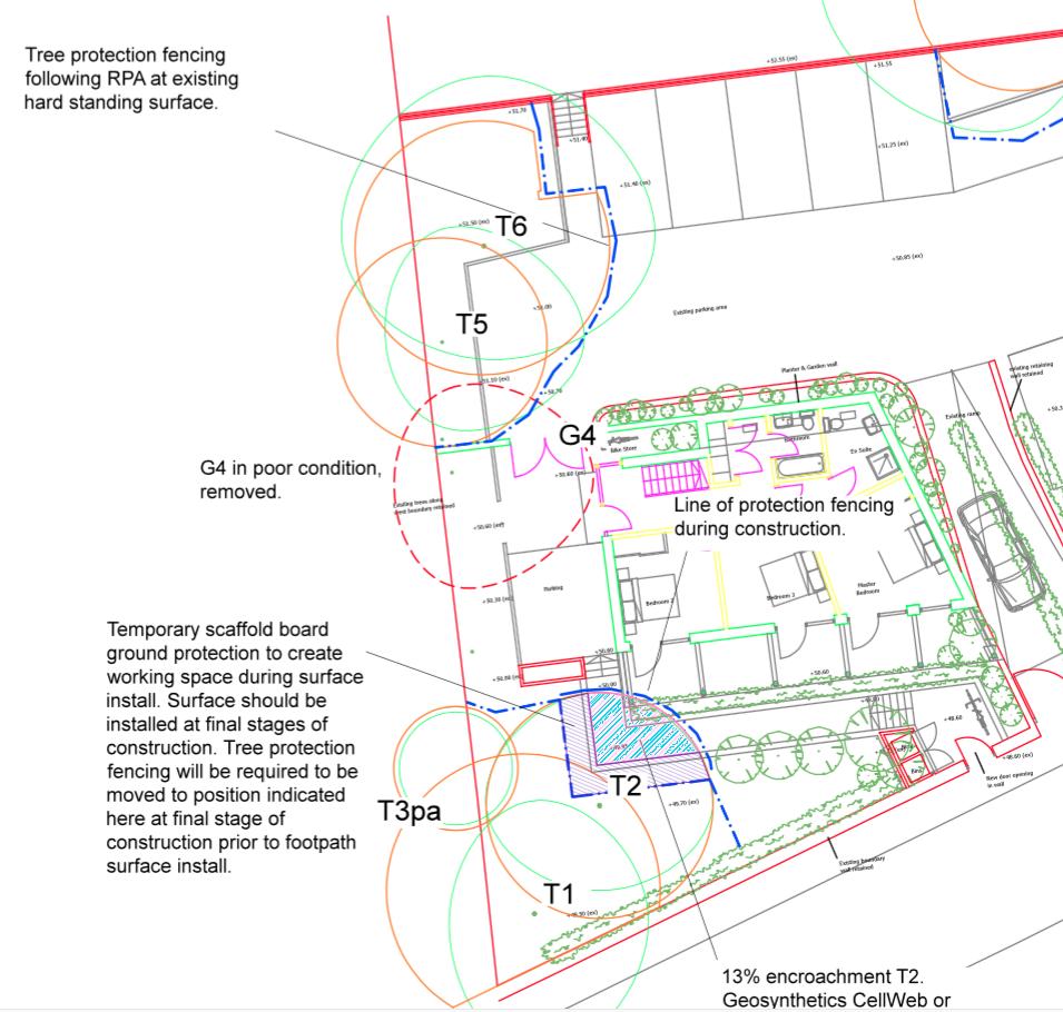 BS5837:2012 Tree Surveys | Impact Assessments | Design Guidance| Site Supervision | Success