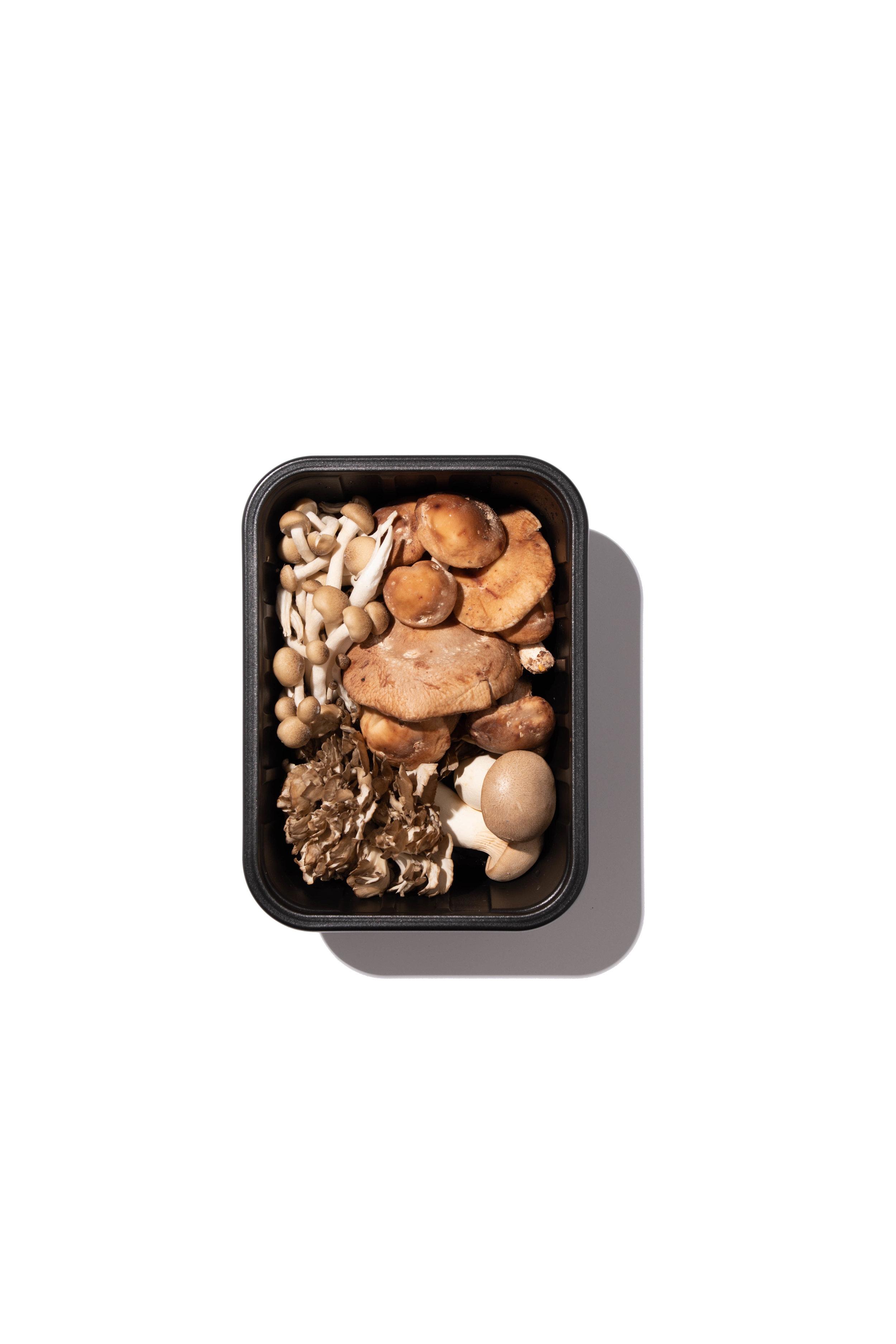 Mushrooms00033-Edit.jpg