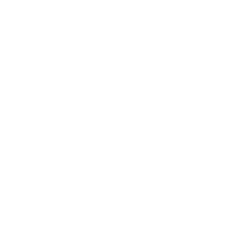 FinIden_logo_PNG_White-01.png