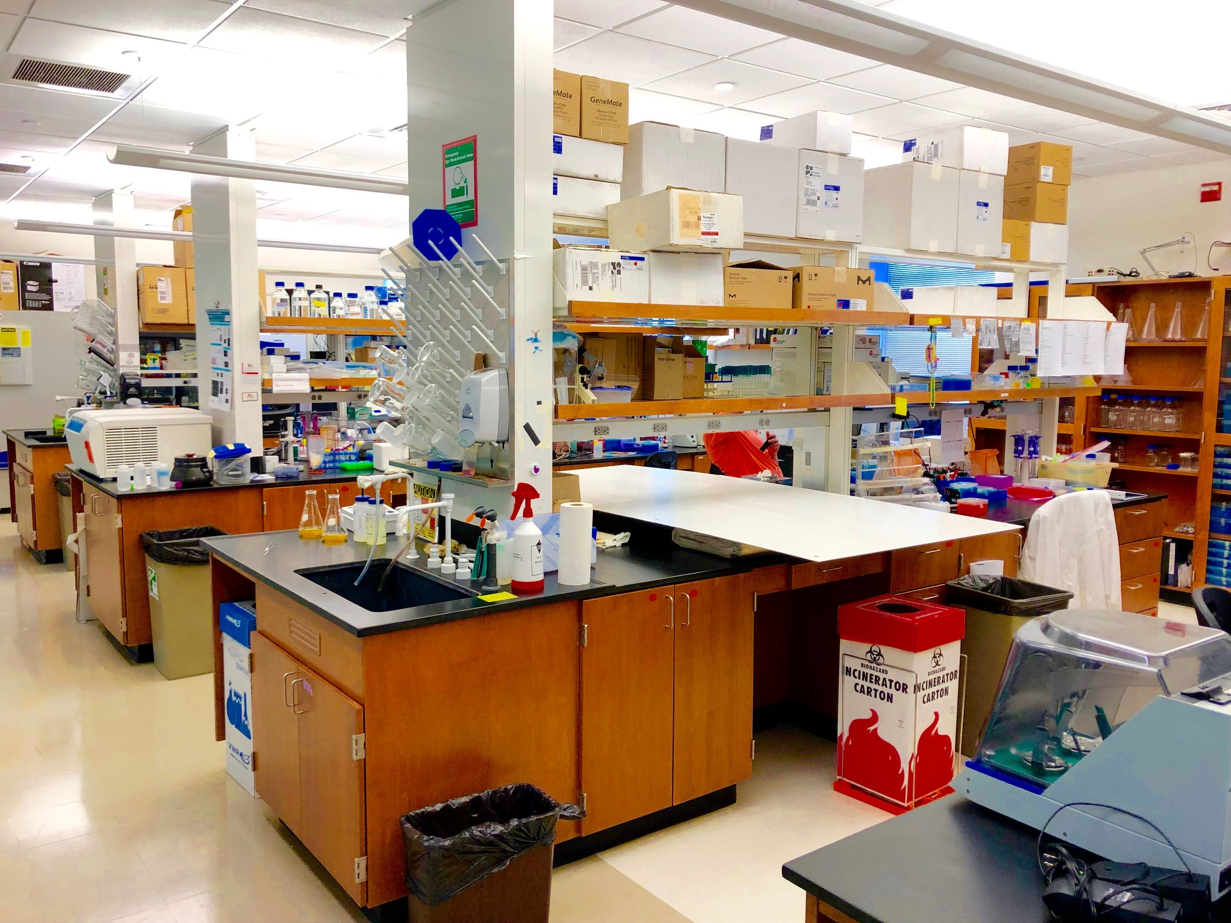 The new lab space -