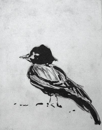 Bird on the Beach  8X10 - Solarplate