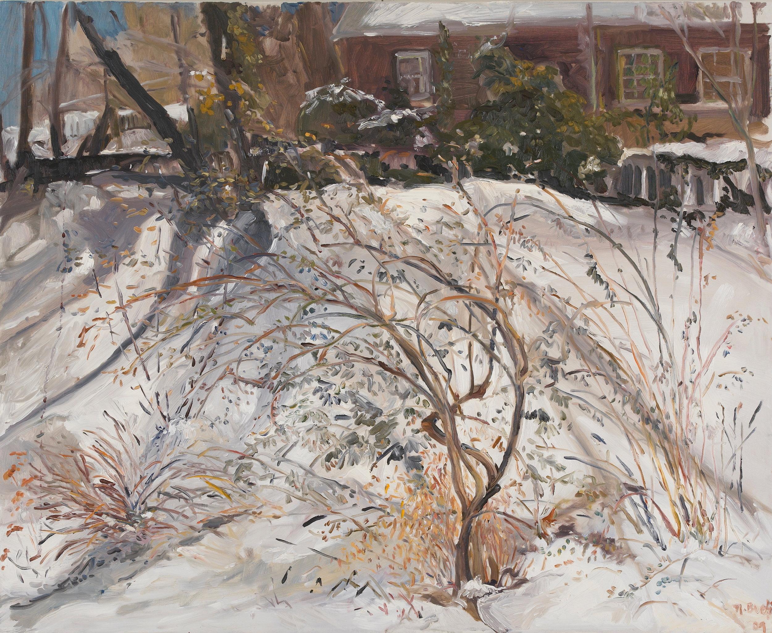 Butterfly Bush in Winter  28X32 - Oil on Linen