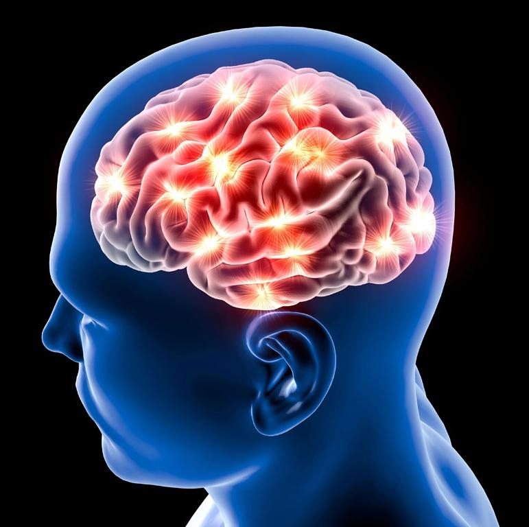 Active brain-synapses.jpg