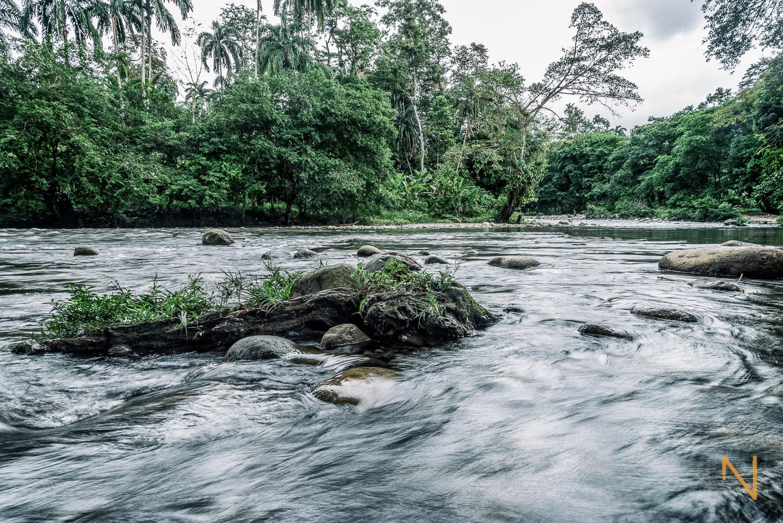 El río Róbalo cerca de Norteño, Bocas del Toro.