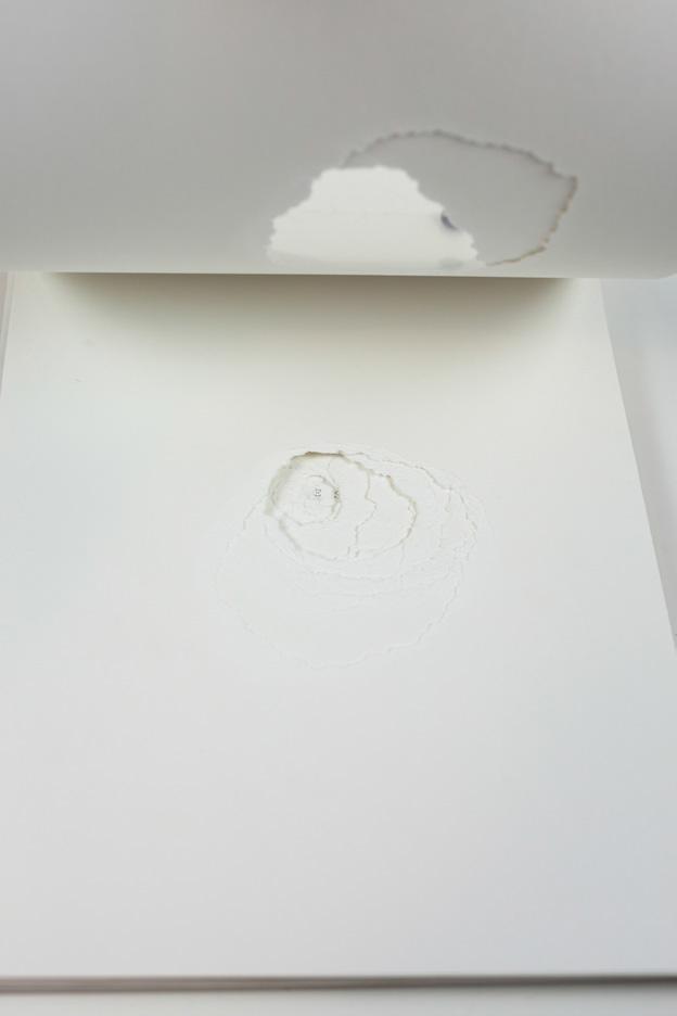 Carolina-Pimenta-One-Shot-Artist-book_004.jpg