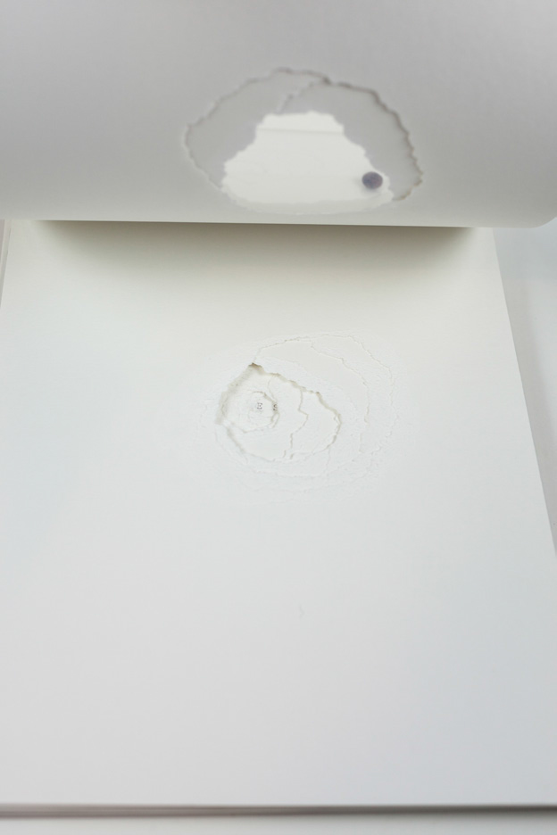 Carolina-Pimenta-One-Shot-Artist-book_005.jpg