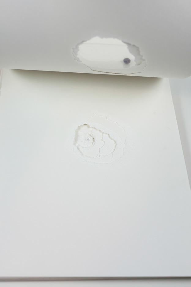 Carolina-Pimenta-One-Shot-Artist-book_006.jpg