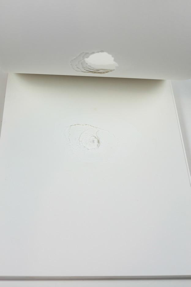 Carolina-Pimenta-One-Shot-Artist-book_009.jpg