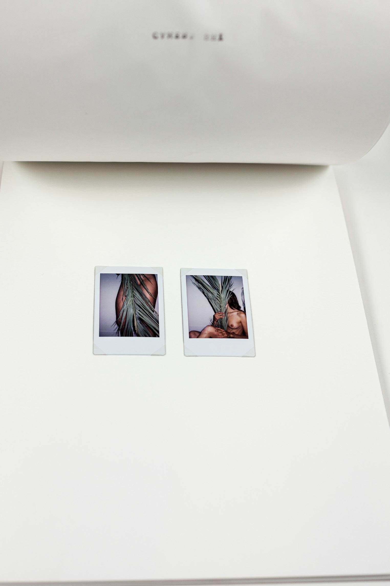 Carolina-Pimenta-One-Shot-Artist-book_016.jpg