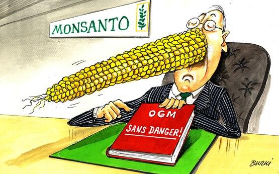 OGM-Monsanto.jpg