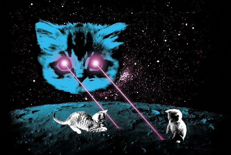 Chat laser.jpg