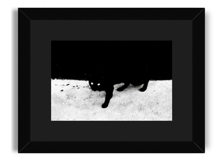 Agus Aminullah The Cat Black Frame Black Mat.png