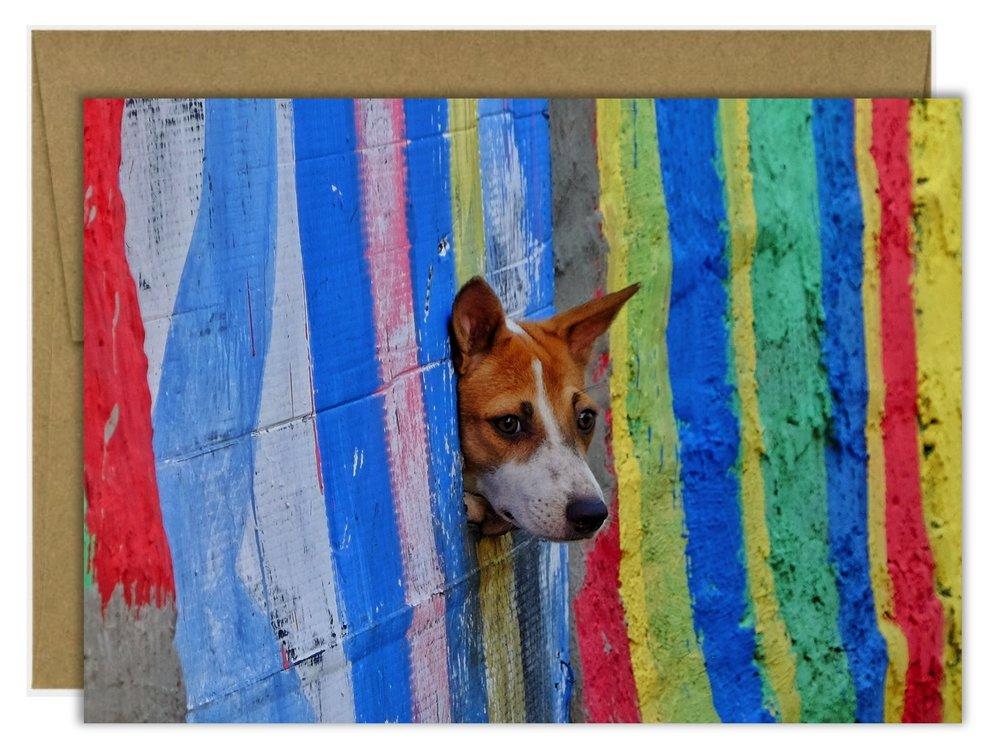 Agus+Aminullah+The+Dog+Card.jpg.jpg