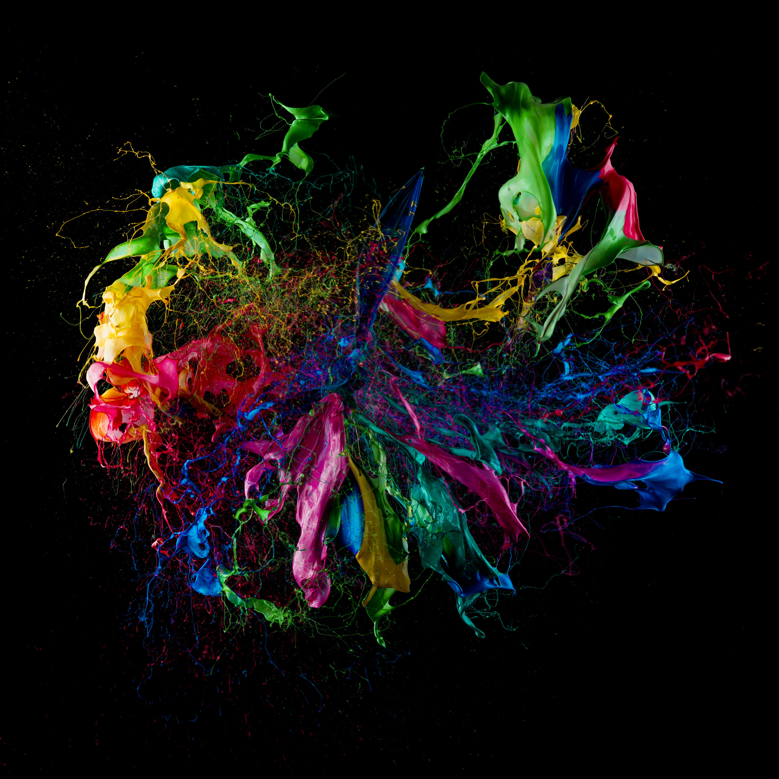 PAINT IN MOTION