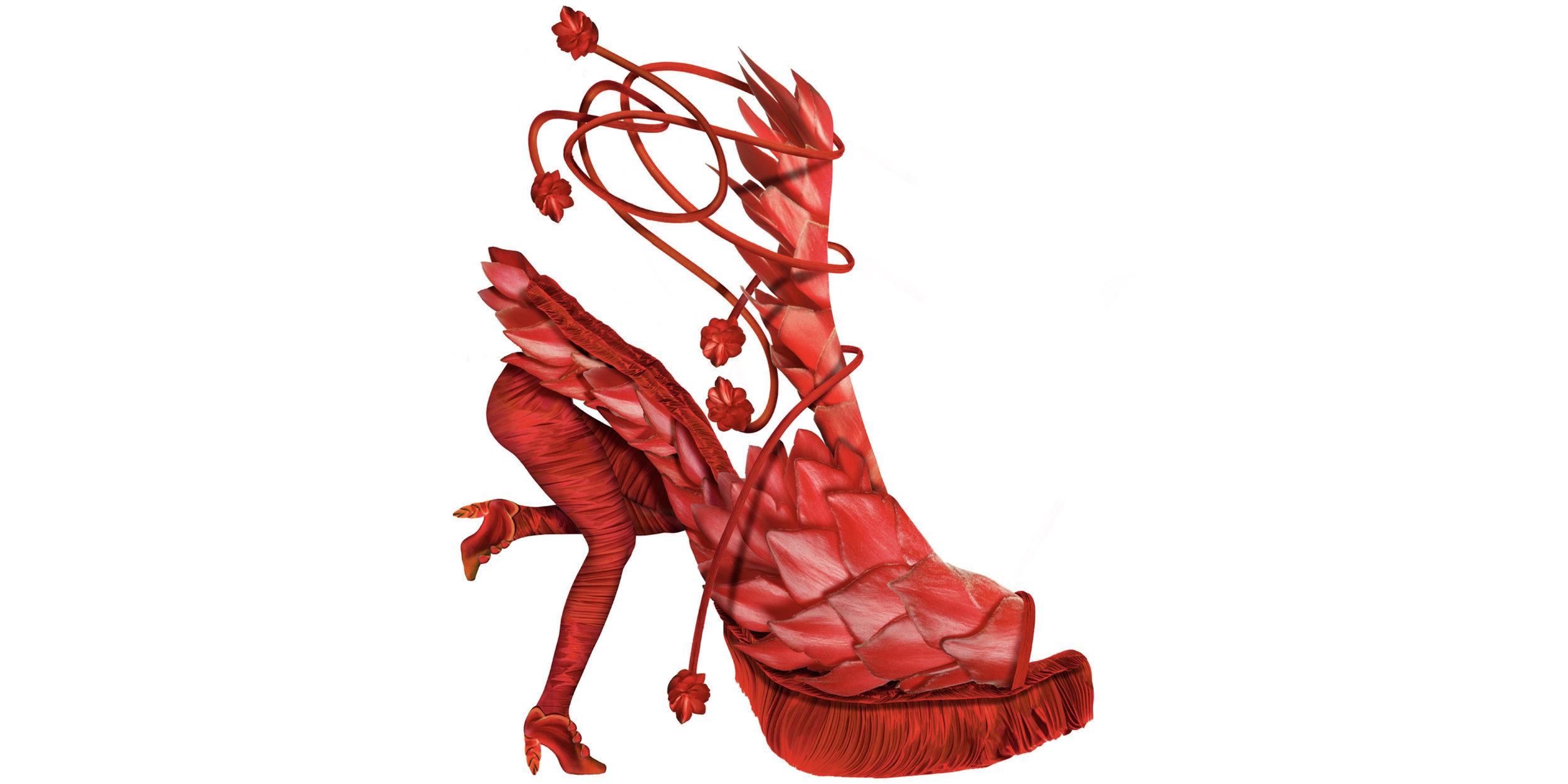 Red_Shoe_Sized.jpg