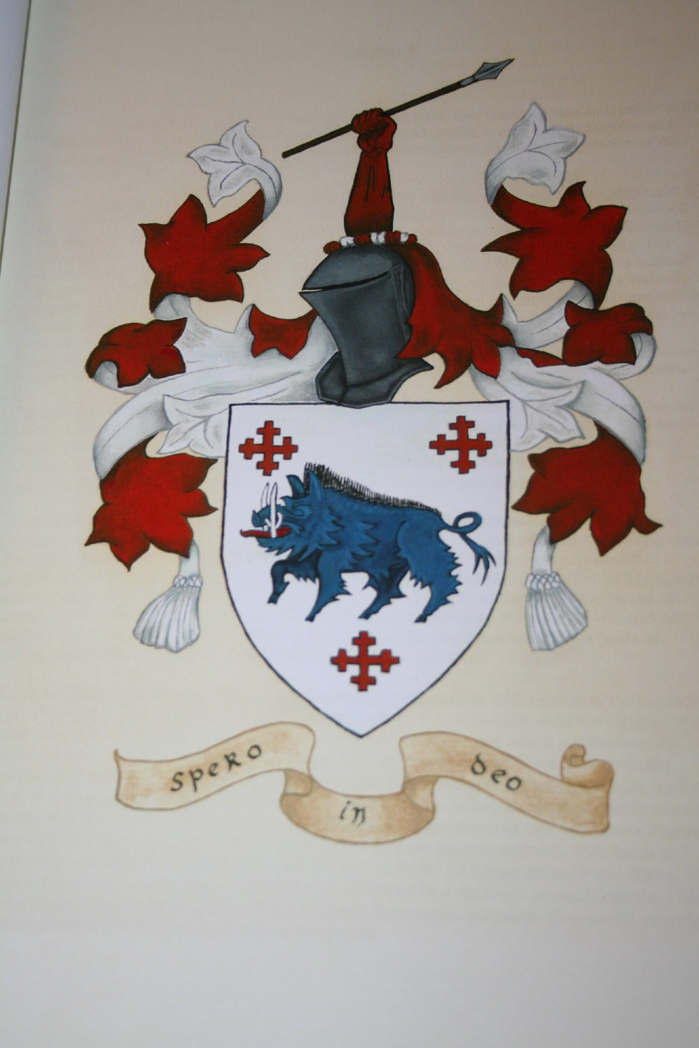 O'Crowley Chief Coat of Arms per records since 1562