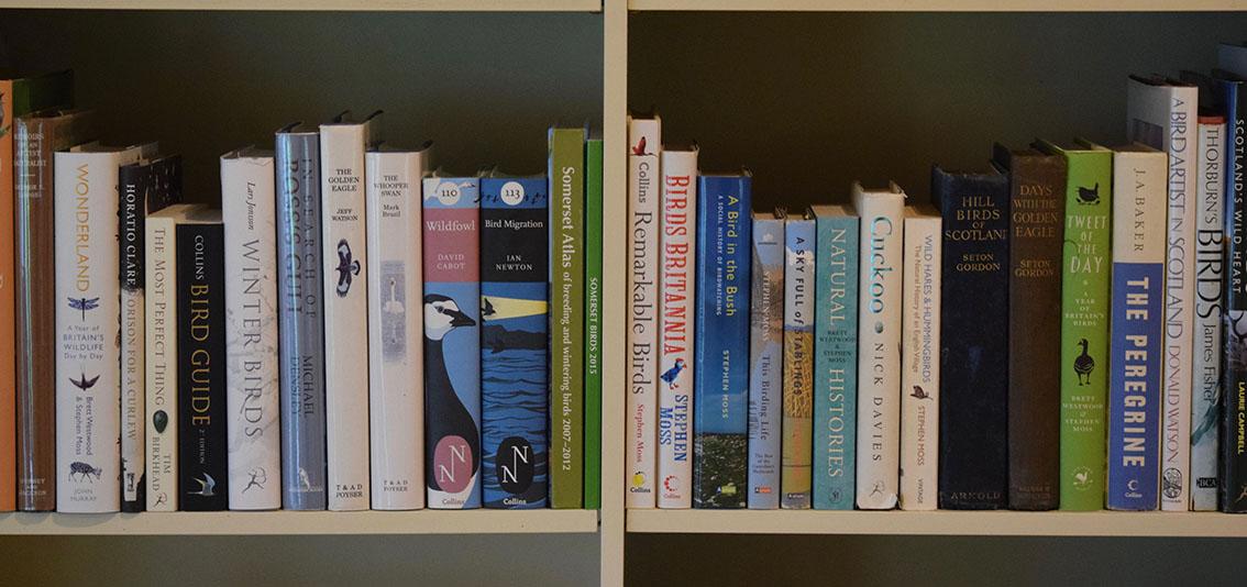 Bird Books.jpg