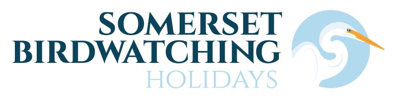 SBH_Logo 2.png