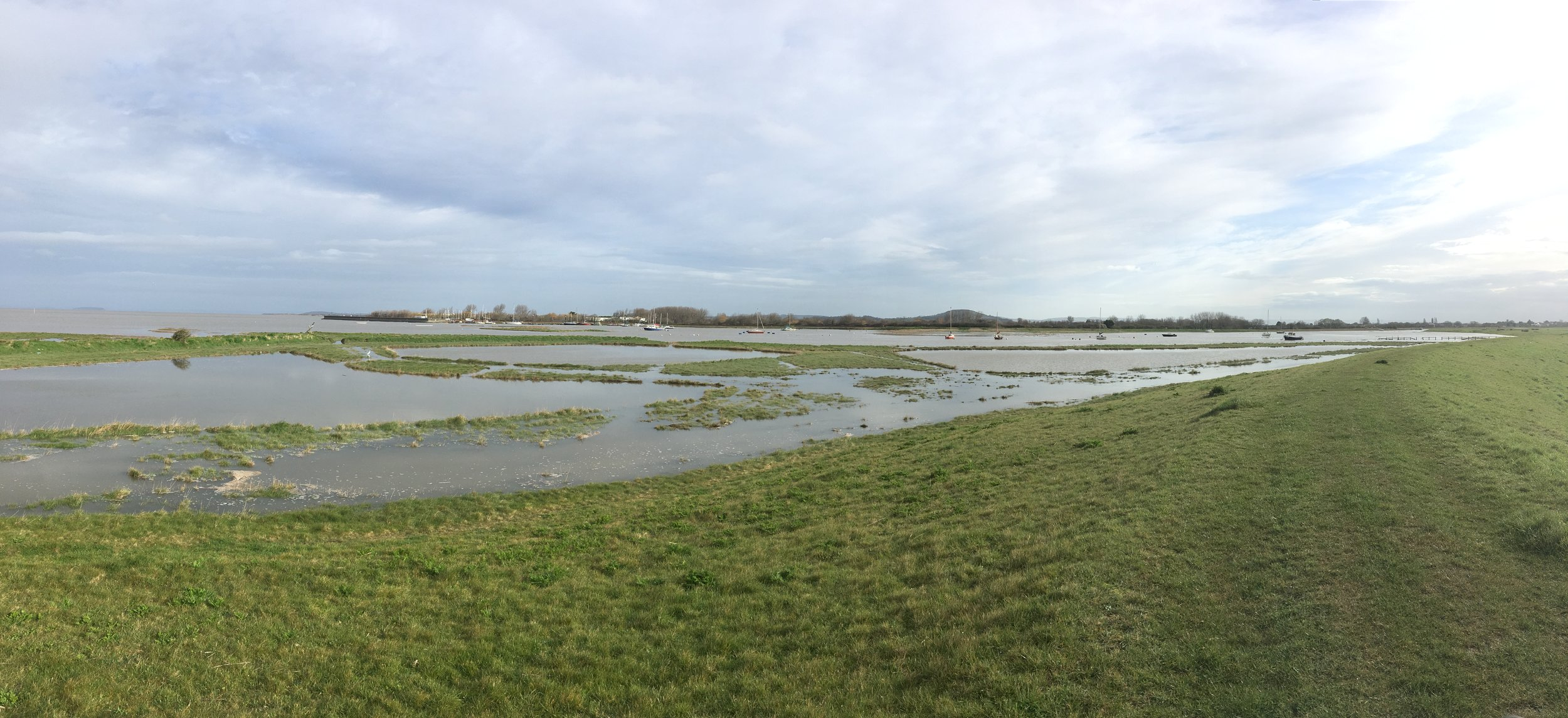 Spring tide - River Brue estuary - spot the little egret..