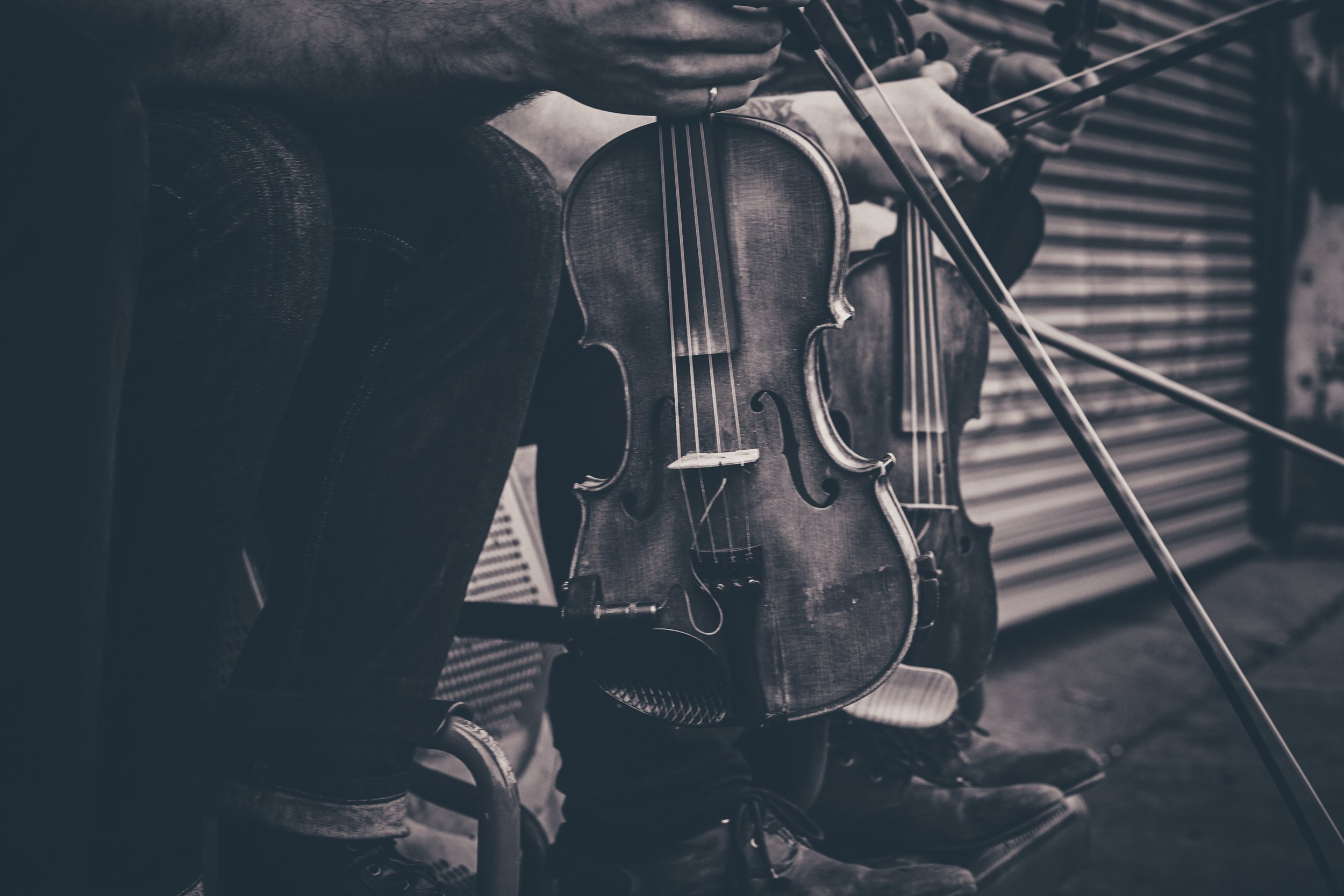 3. Fretless - Fiddles.jpg