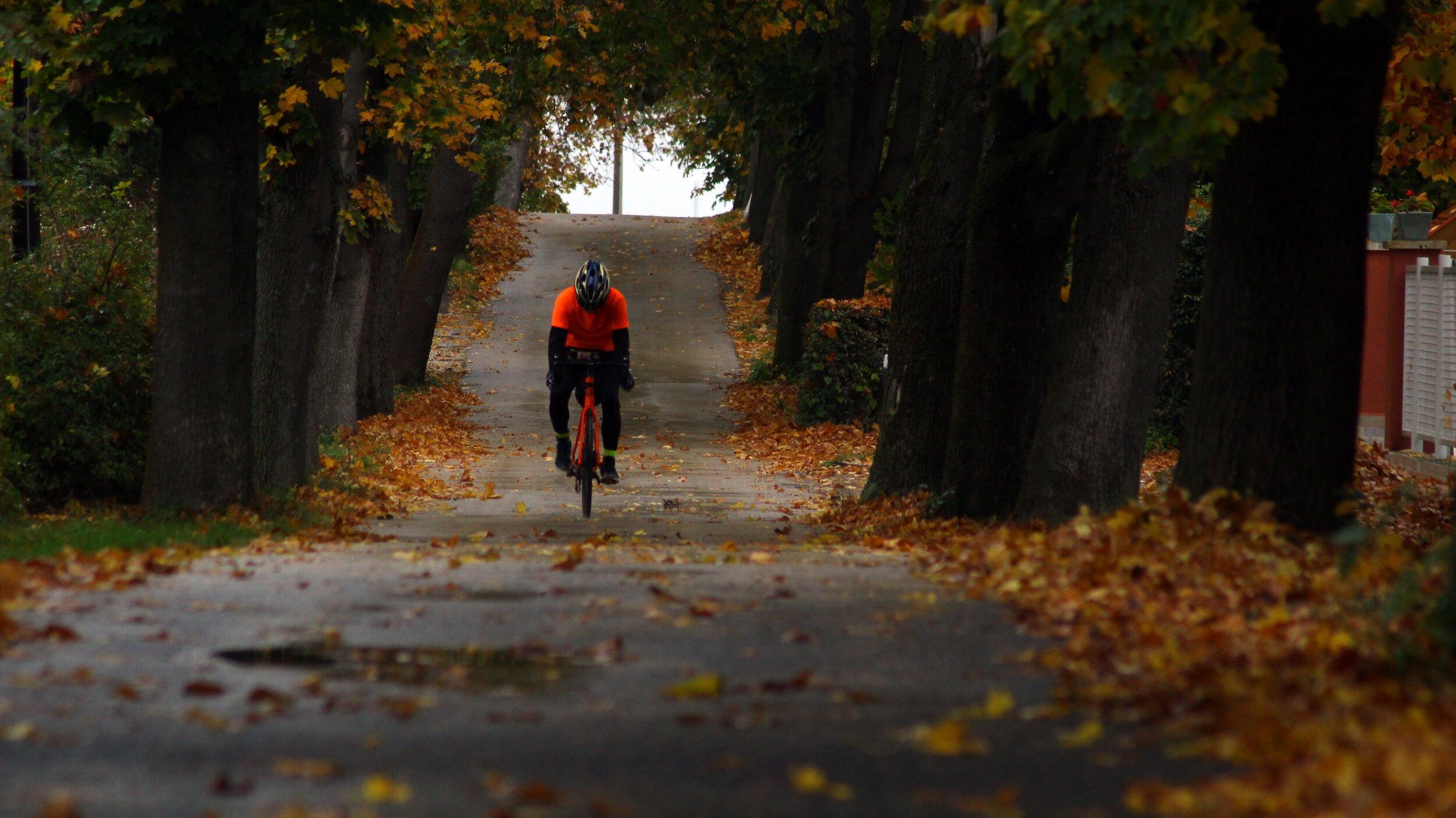 best fall workouts biking