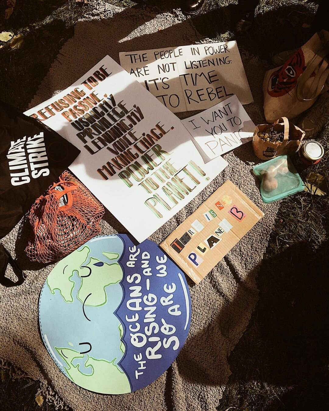 The Global Youth Climate Strike