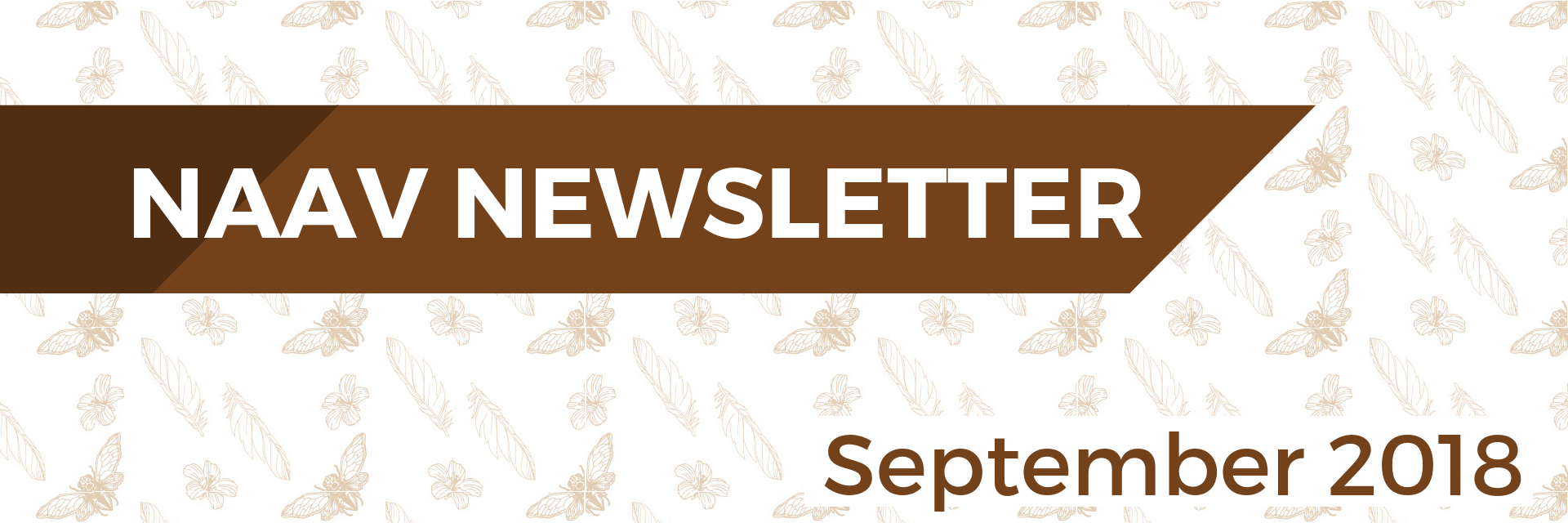 Newsletter Headers (1).png