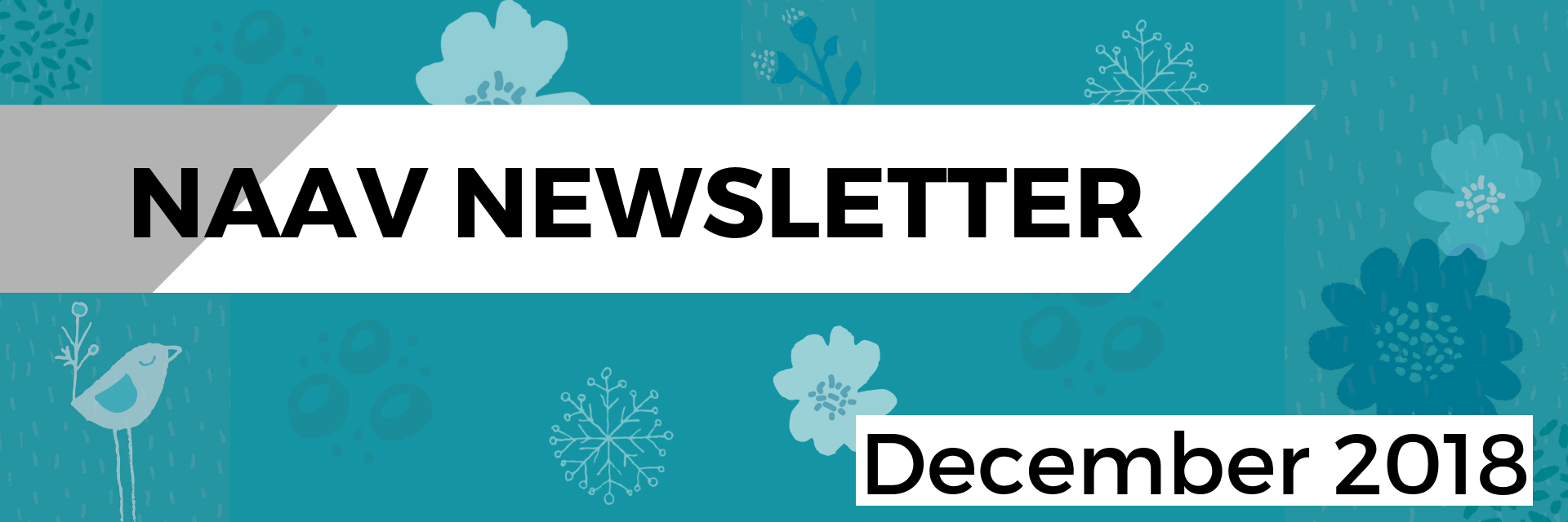 Newsletter Headers (4).png