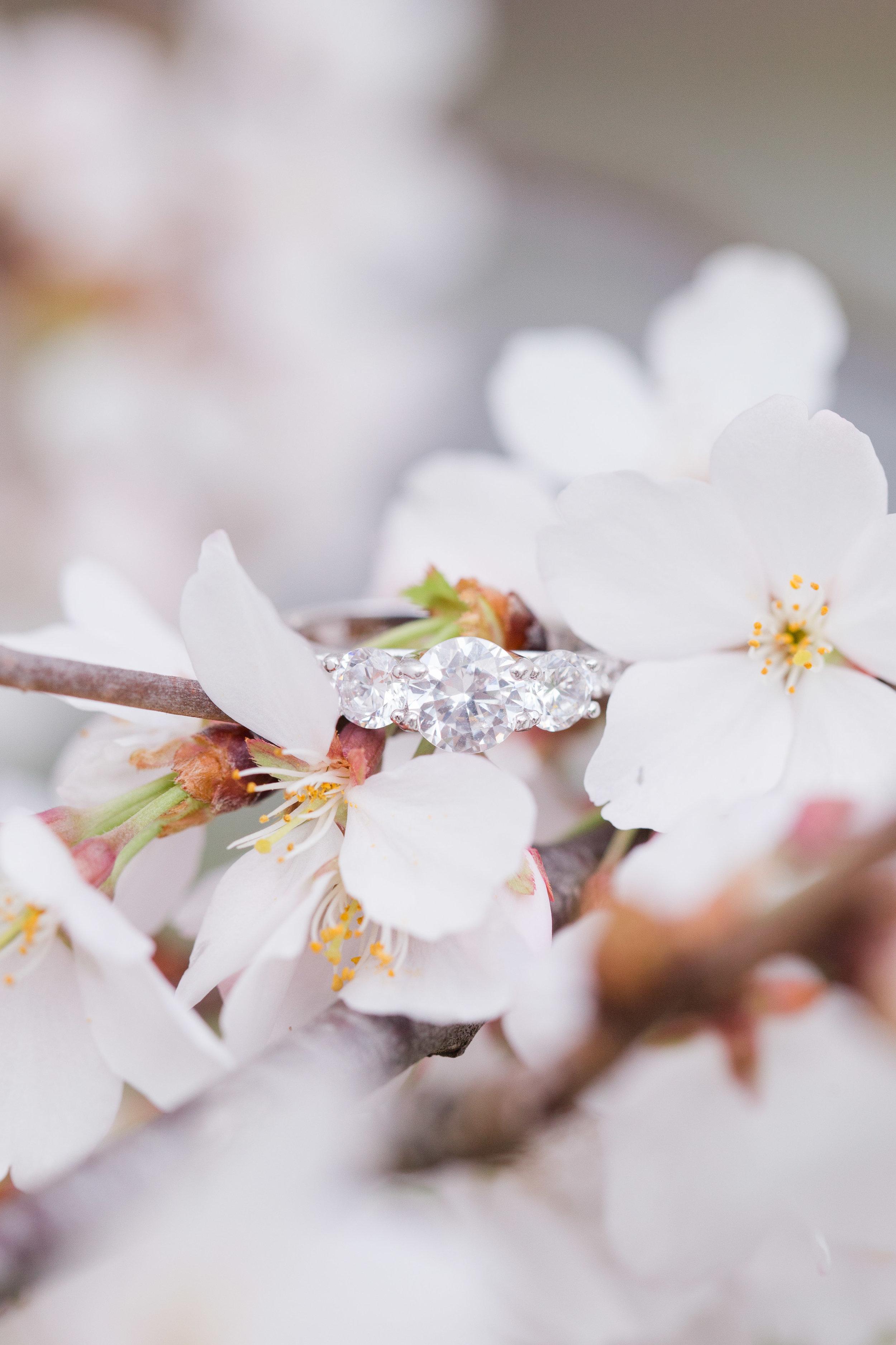 appleblossomring-1.jpg
